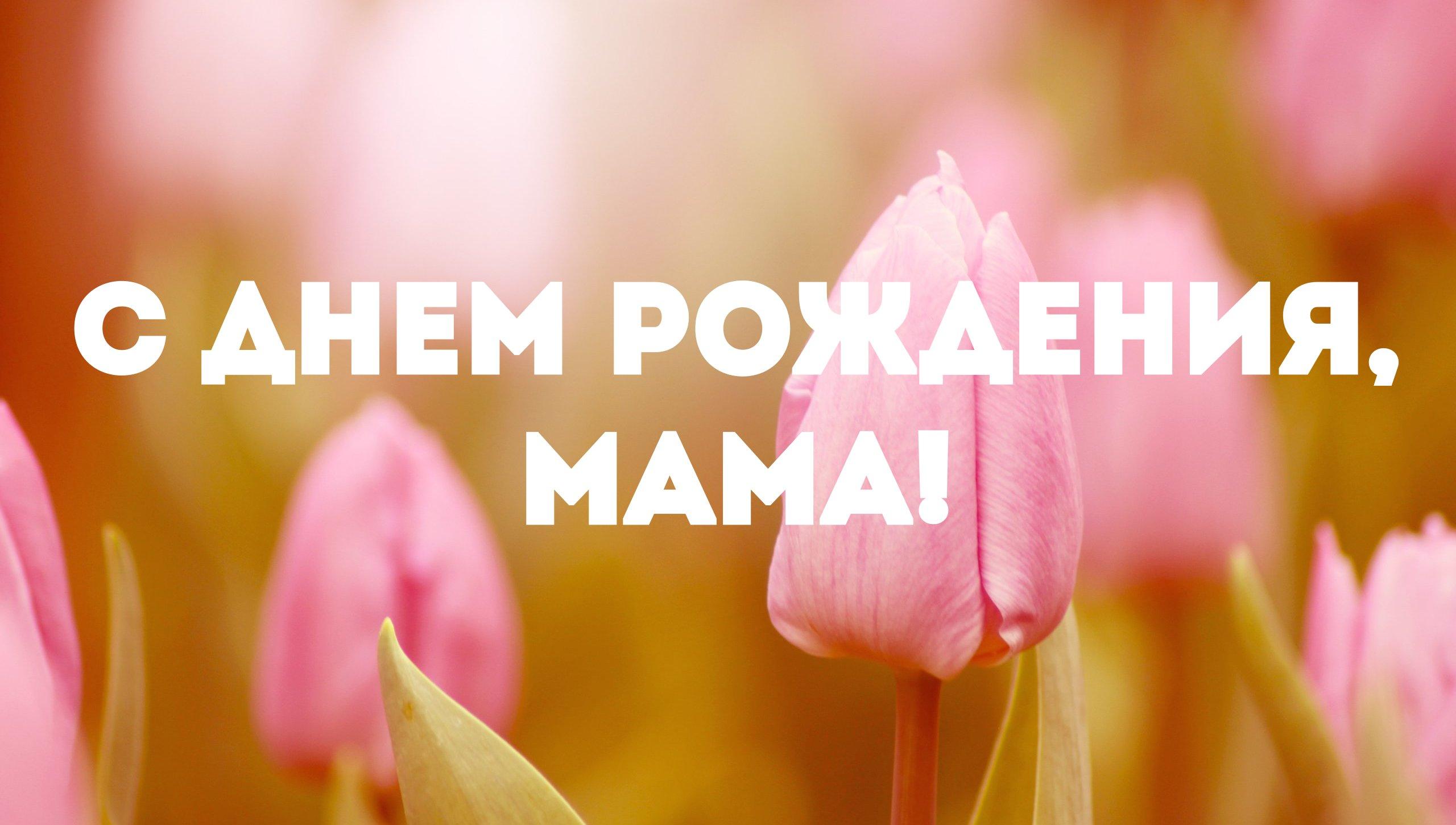 Днем, поздравление мам картинки