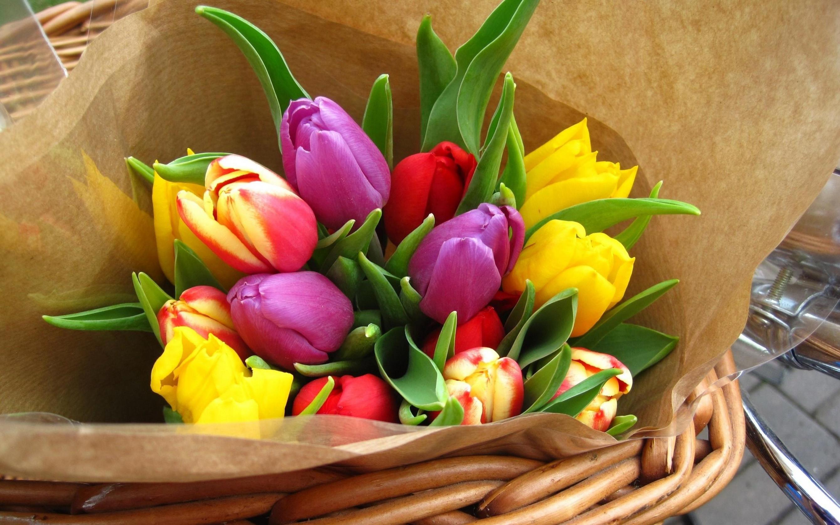 Сонник: тюльпаны — к чему снятся