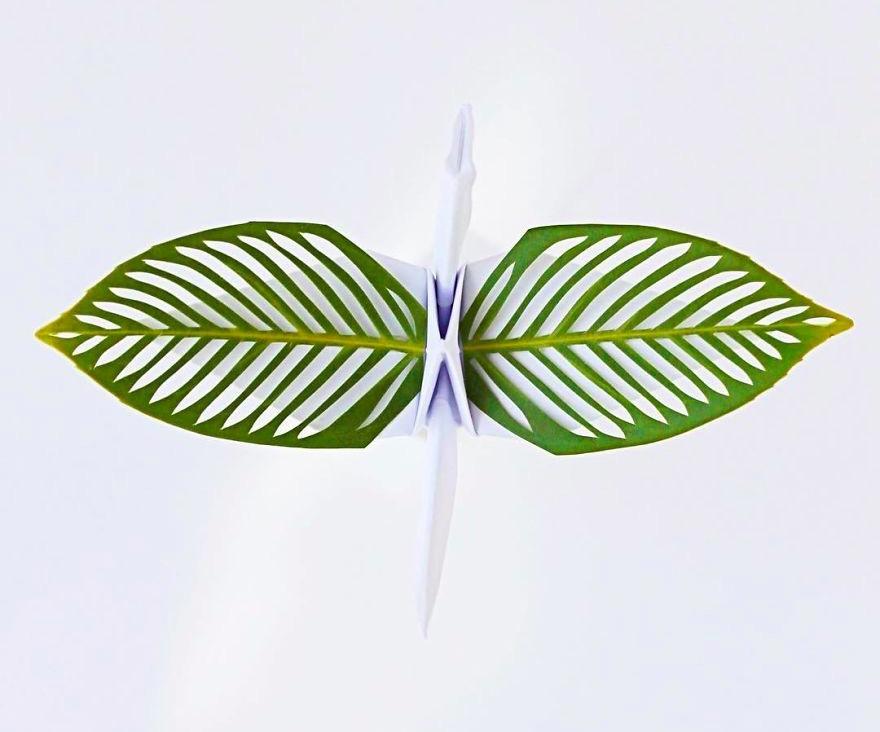 Оригами-дракон, ставший частью большого испытания: 41 фото