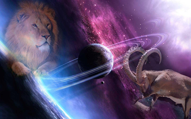 Лев мужчина в сексе с женщиной львом