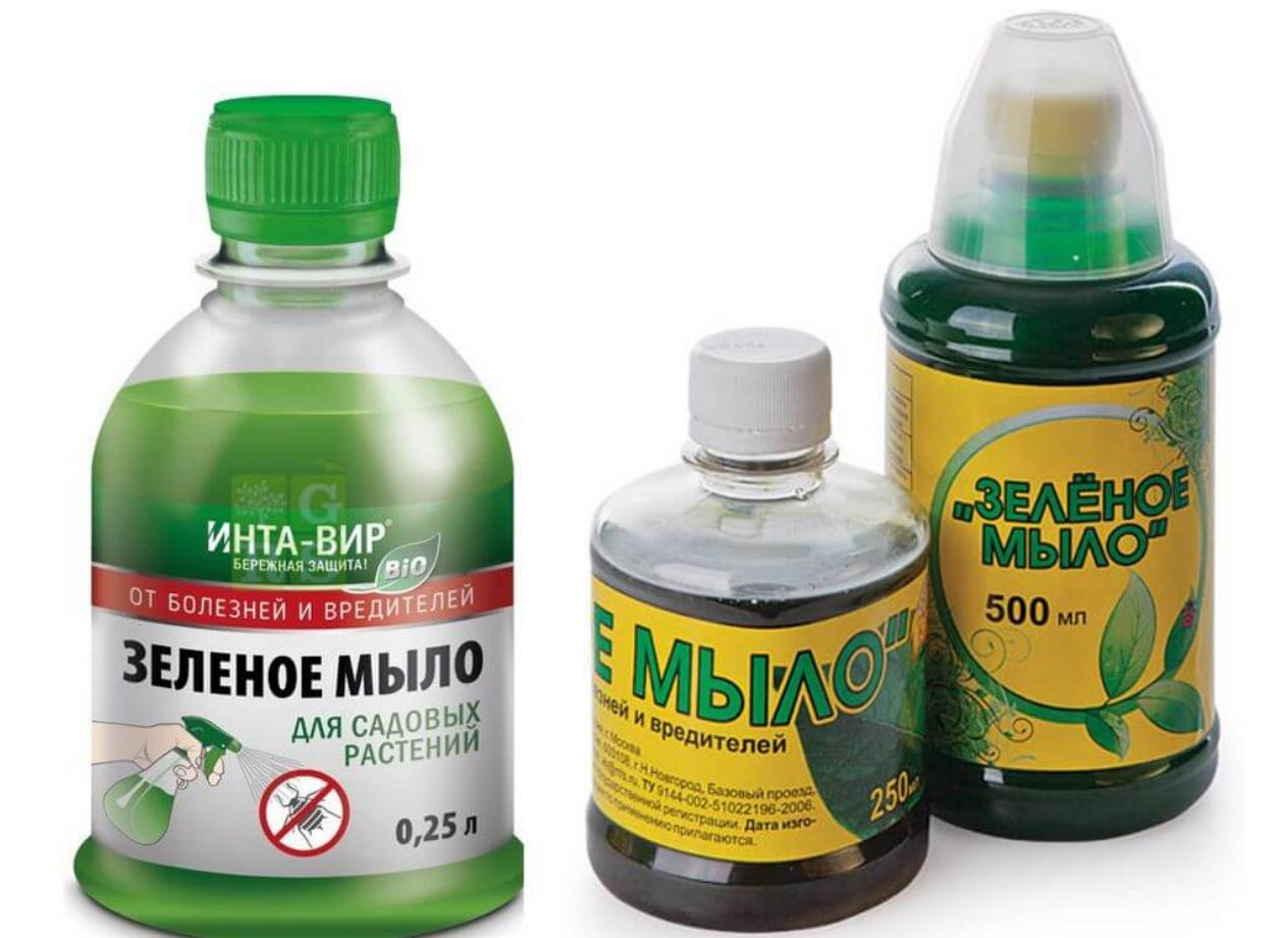 От каких вредителей помогает зеленое мыло. Зеленое мыло от вредителей – инструкция по применению на садовом участке