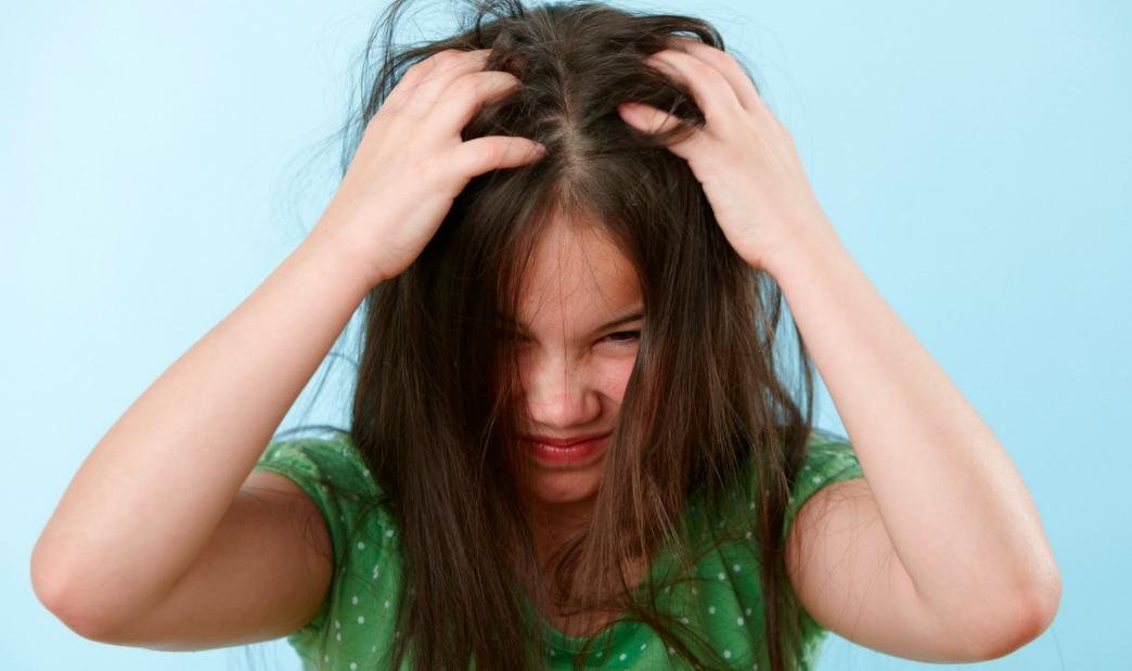 К чему снятся гниды - снятся вши и гниды в голове давить их сонник