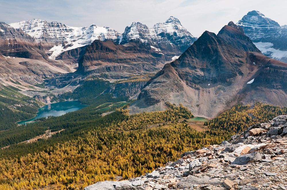 Влюбленная пара путешествует по Америке, Канаде и Северной Европе в поисках восхитительных мест для фотографий