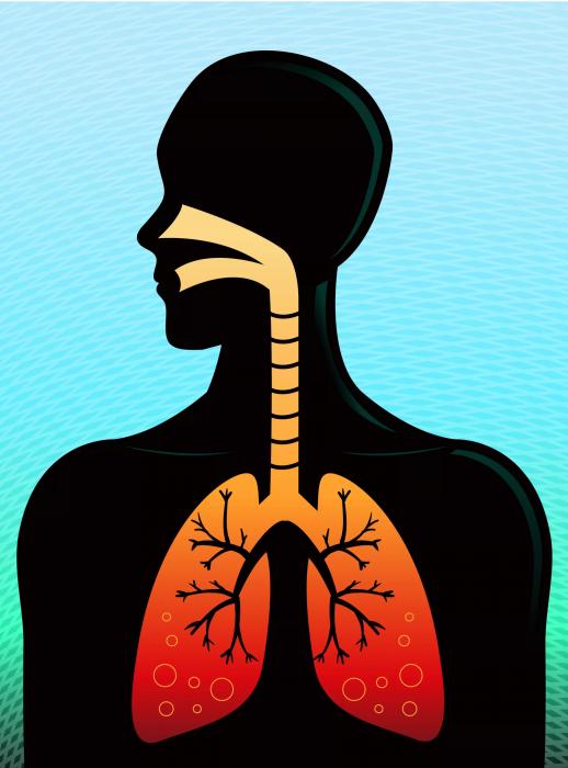 Профилактические упражнения снижают развитие легочных заболеваний.