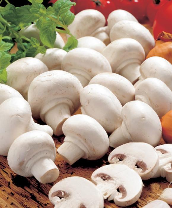 Как правильно хранить грибы – полезные советы